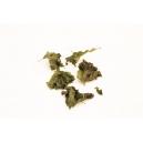 Chips de Kale Spiruline-Tahini